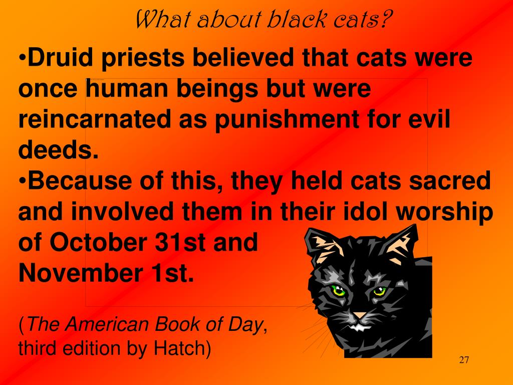 What about black cats?