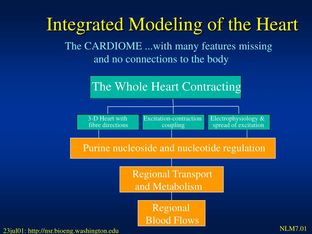 Integrated Modeling of the Heart