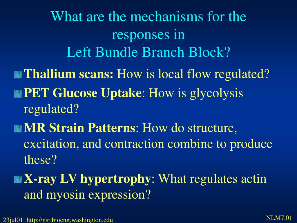 What are the mechanisms for the responses in