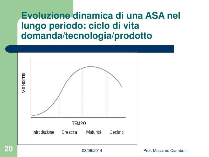 Evoluzione dinamica di una ASA nel lungo periodo: ciclo di vita domanda/tecnologia/prodotto