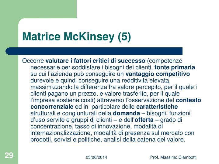 Matrice McKinsey (5)