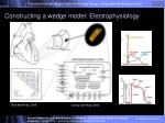 constructing a wedge model electrophysiology