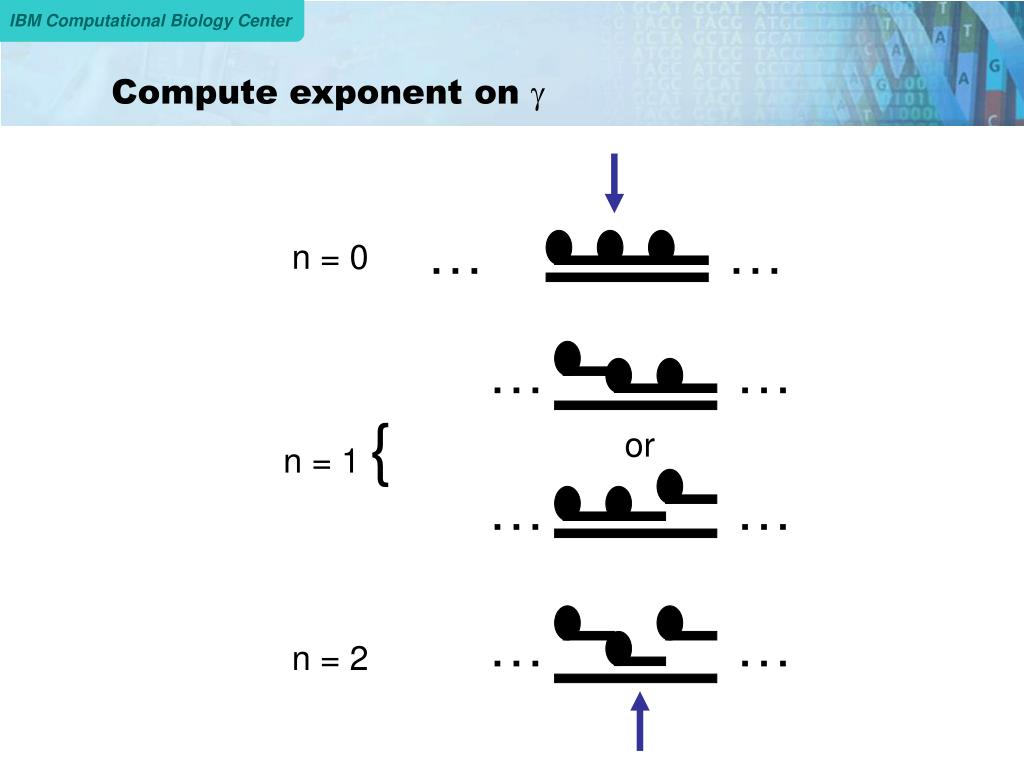 Compute exponent on