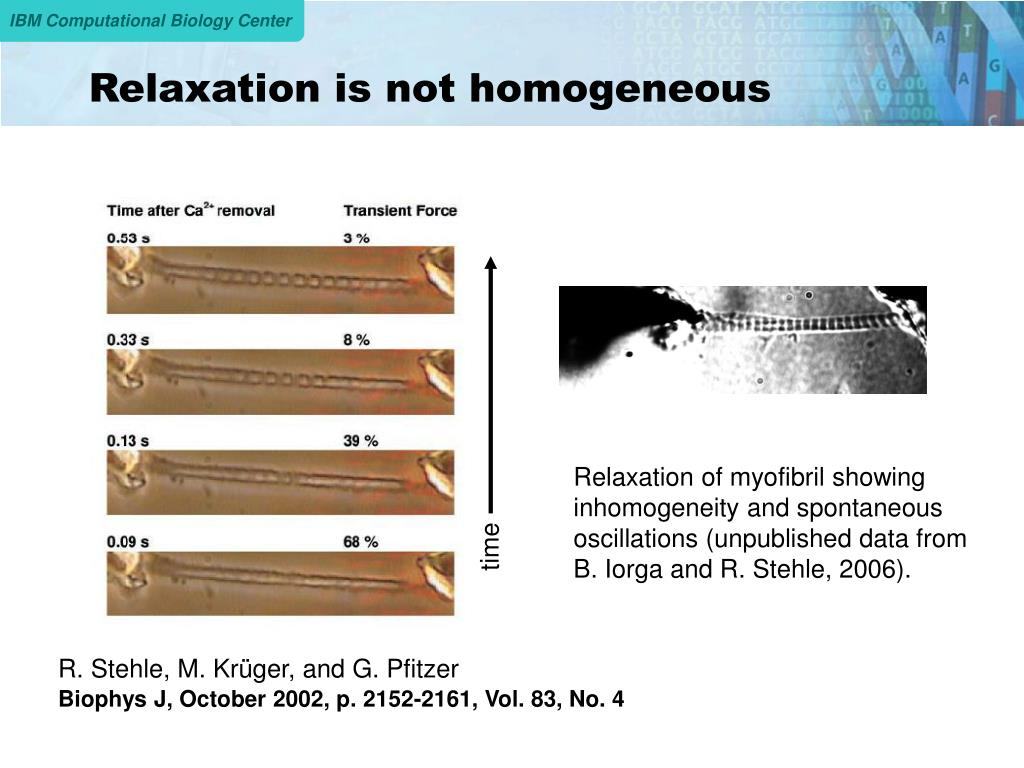 Relaxation is not homogeneous