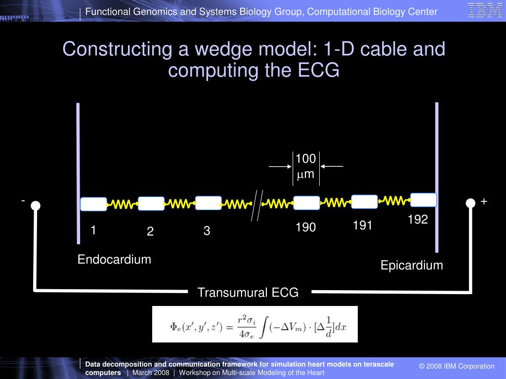 Constructing a wedge model: 1-D cable and computing the ECG