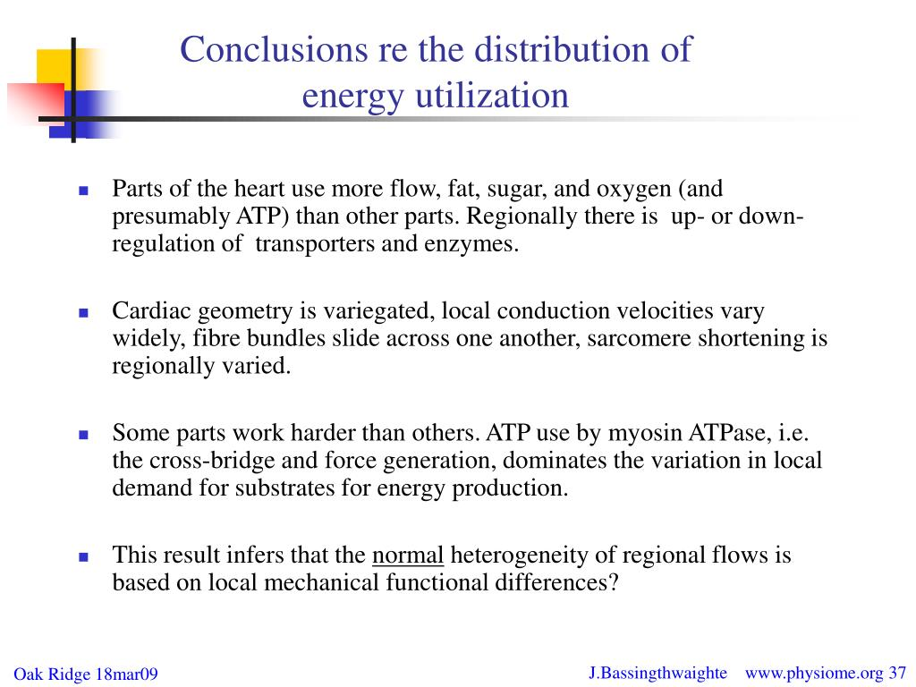 Conclusions re the distribution of energy utilization