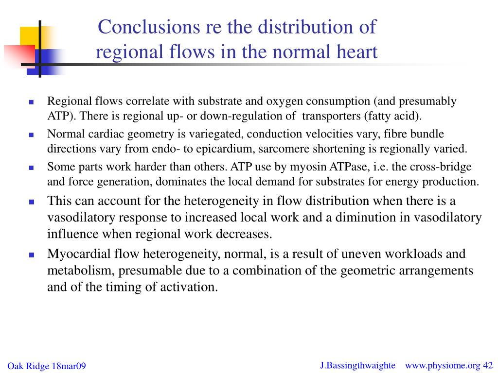 Conclusions re the distribution of regional flows in the normal heart