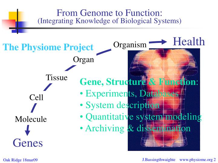 From genome to function integrating knowledge of biological systems