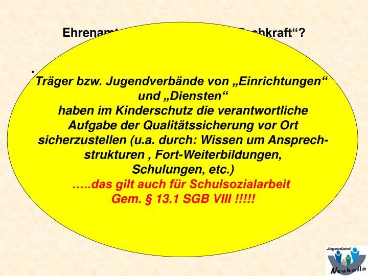 """Träger bzw. Jugendverbände von """"Einrichtungen"""""""