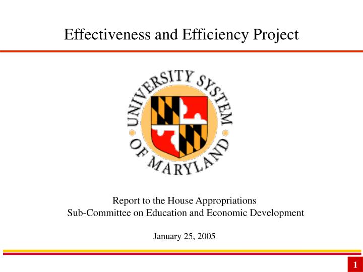 Effectiveness and efficiency project