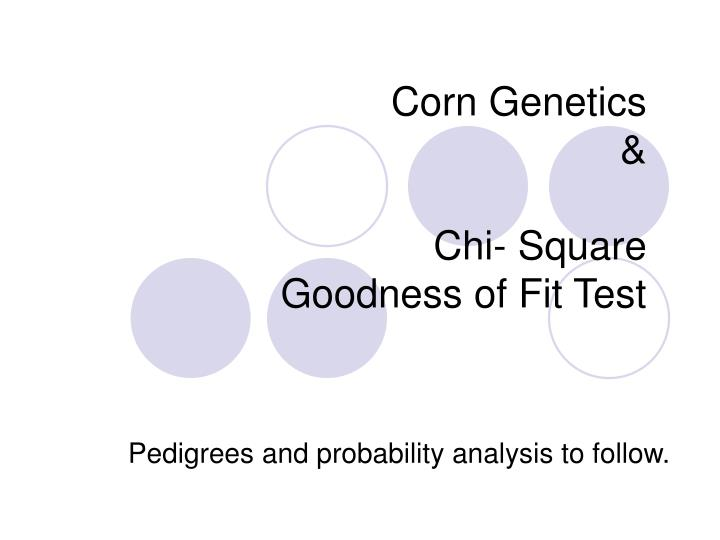 Corn genetics chi square goodness of fit test l.jpg