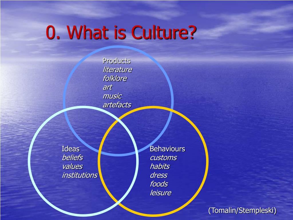 0. What is Culture?