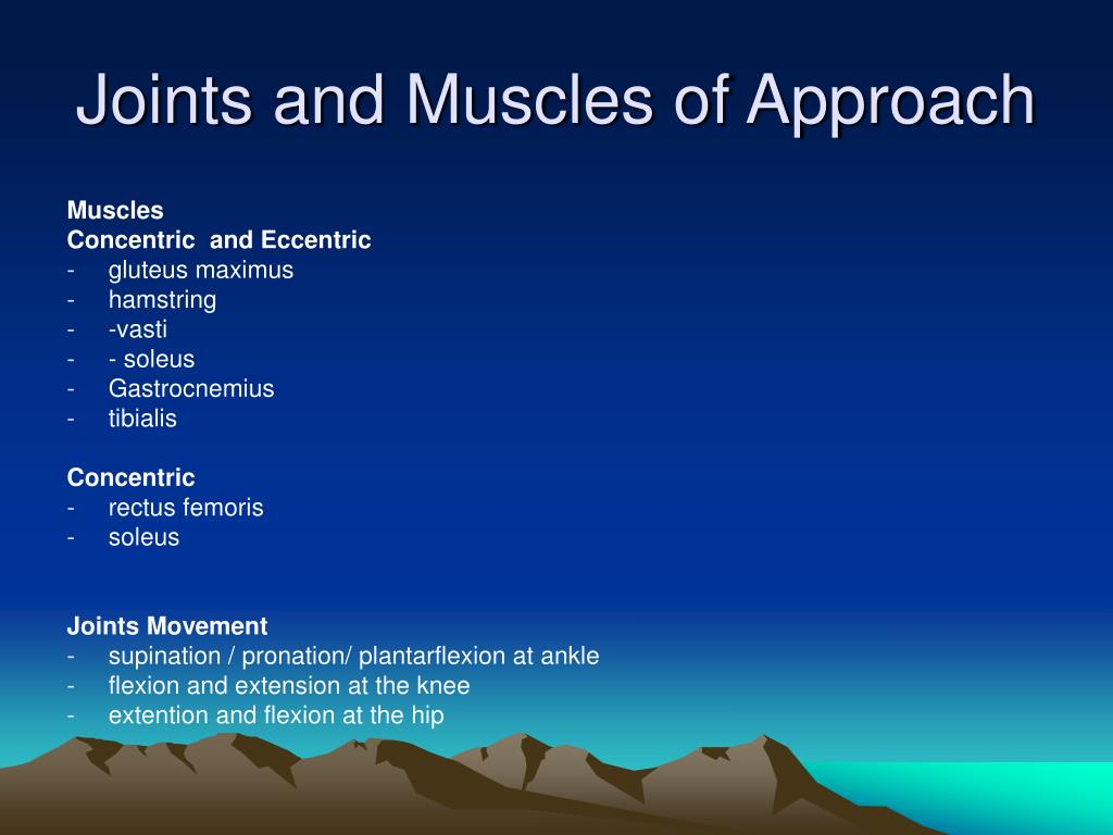 Joints and Muscles of Approach