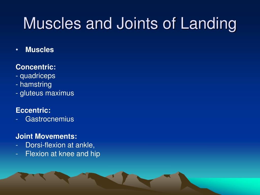 Muscles and Joints of Landing