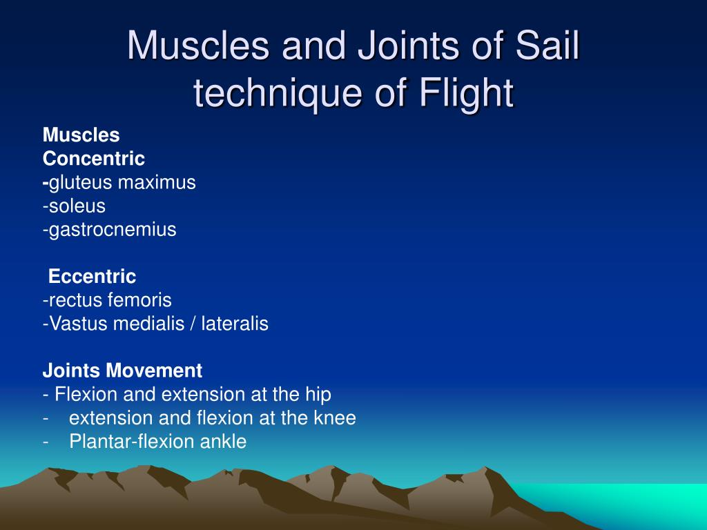 Muscles and Joints of Sail technique of Flight