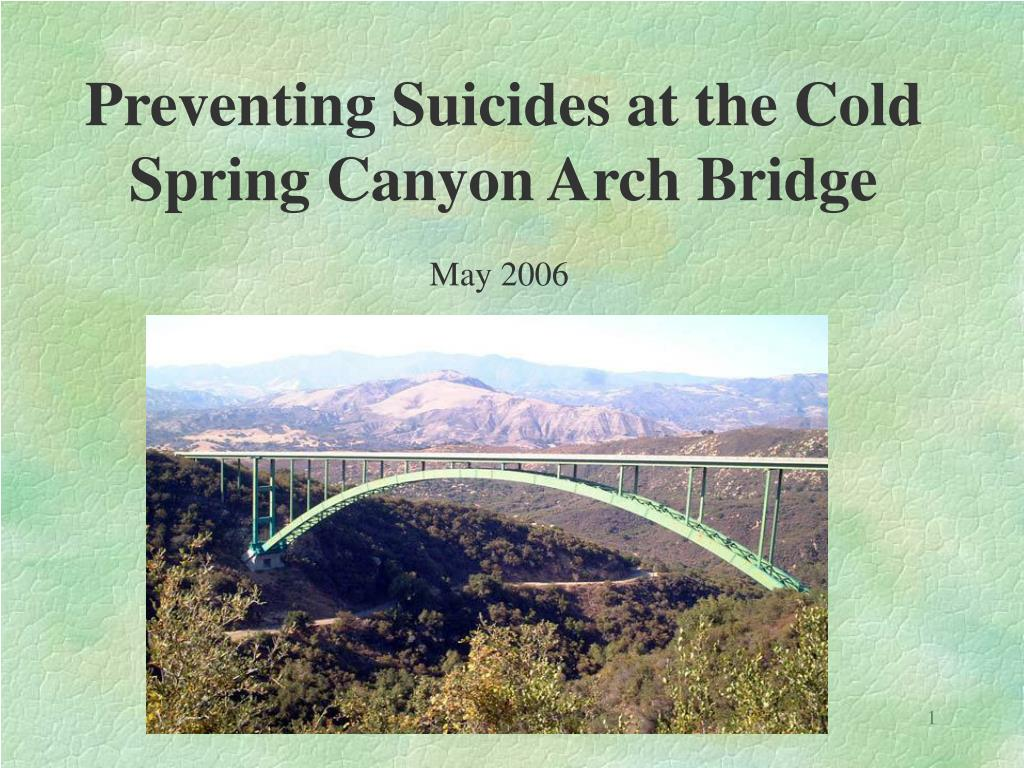 Preventing Suicides at the Cold Spring Canyon Arch Bridge