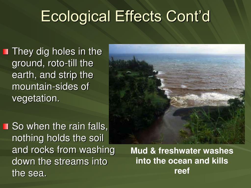 Ecological Effects Cont'd