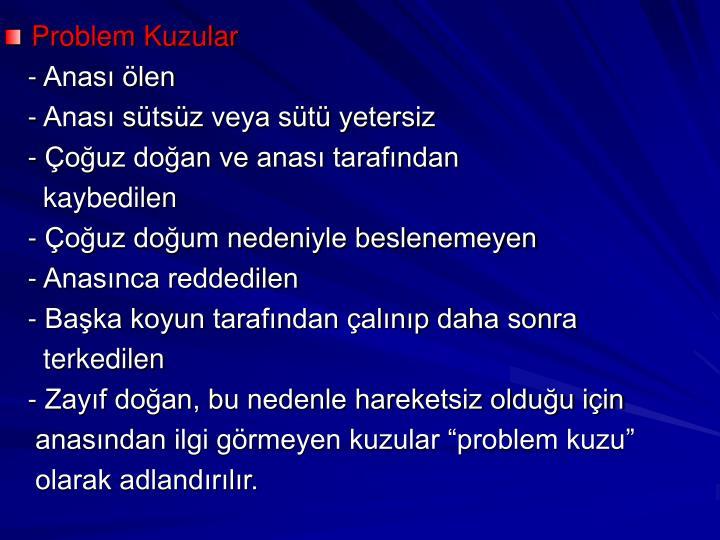 Problem Kuzular