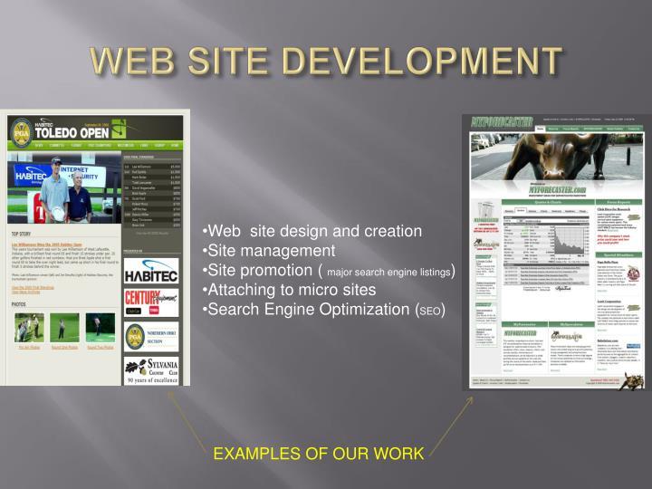 WEB SITE DEVELOPMENT