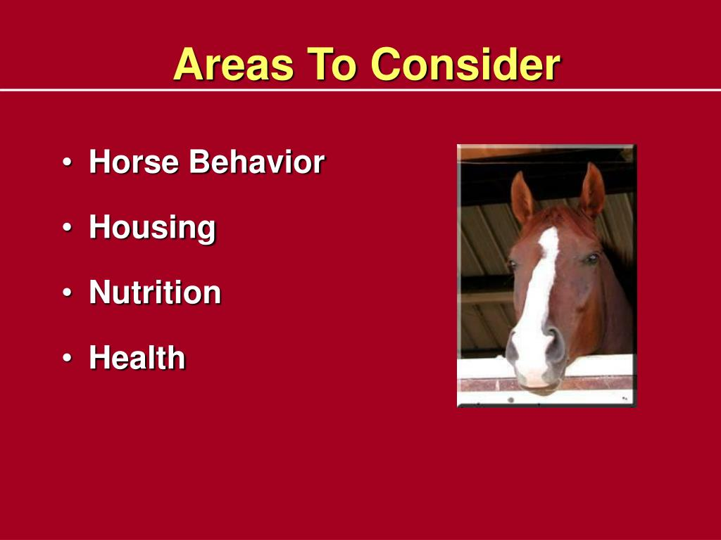 Areas To Consider