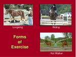 forms of exercise