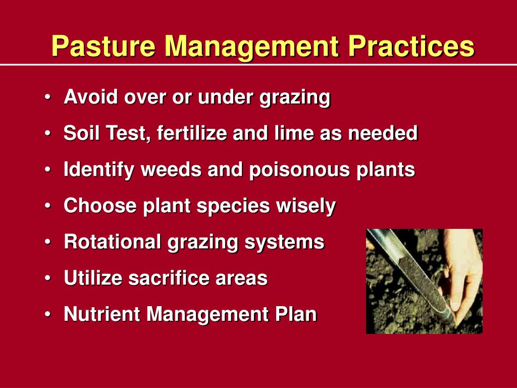 Pasture Management Practices