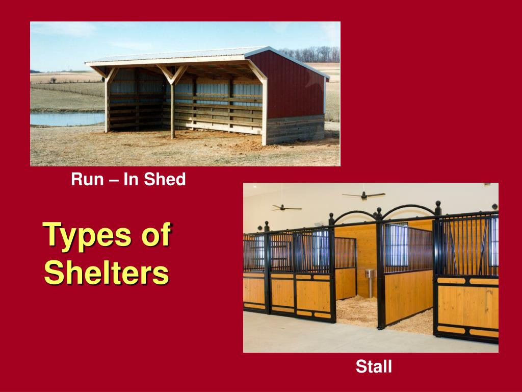 Types of Shelters