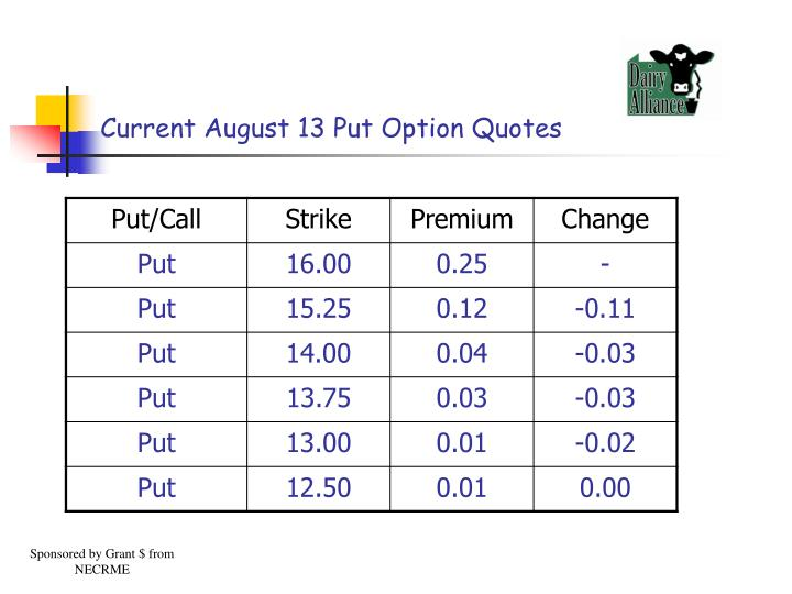 Current August 13 Put Option Quotes