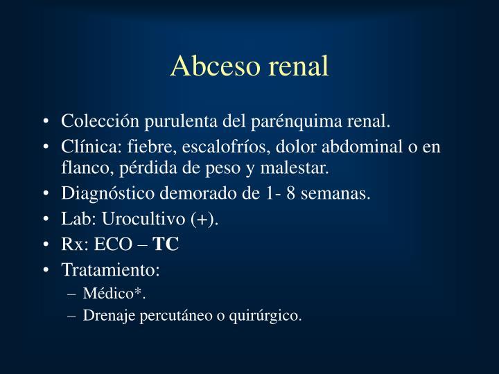 Abceso renal