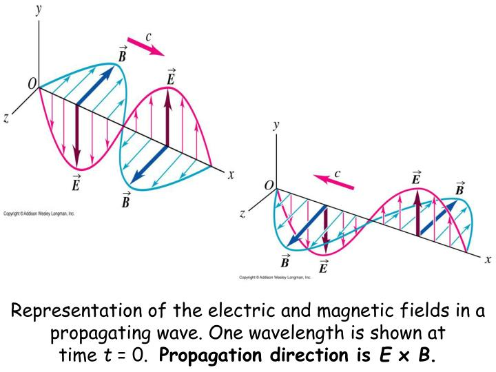 Representation of the electric and magnetic fields in a propagating wave. One wavelength is shown at