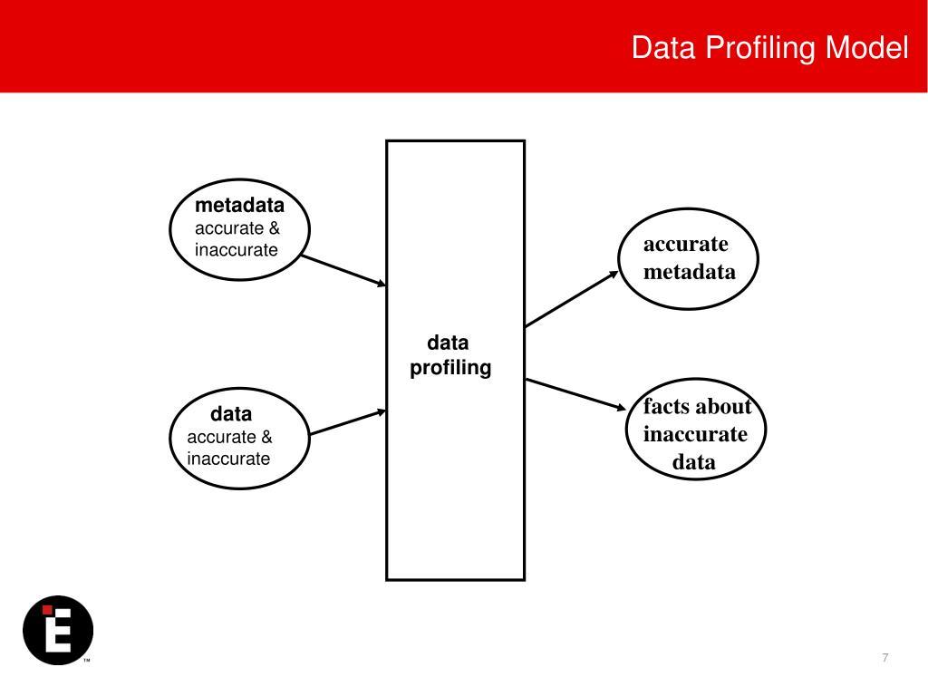 Data Profiling Model