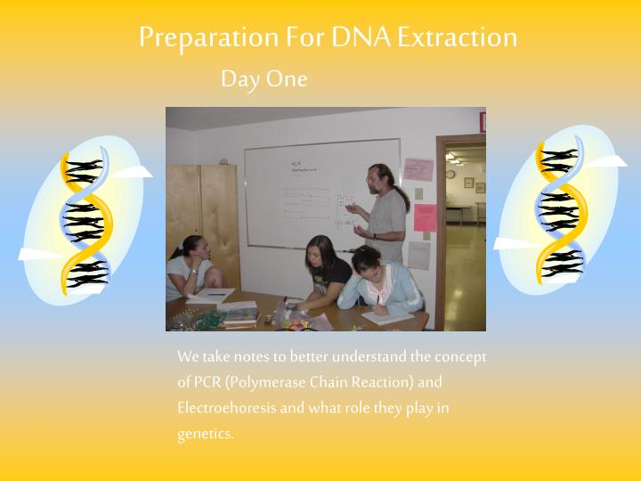Preparation For DNA Extraction