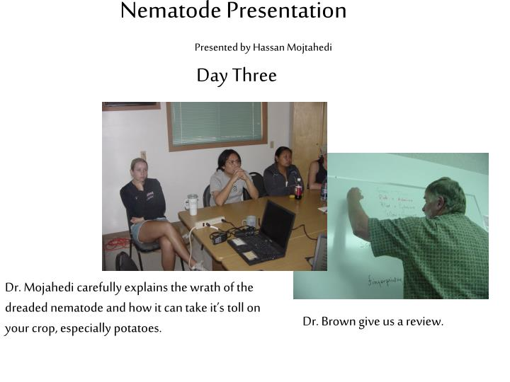 Nematode Presentation