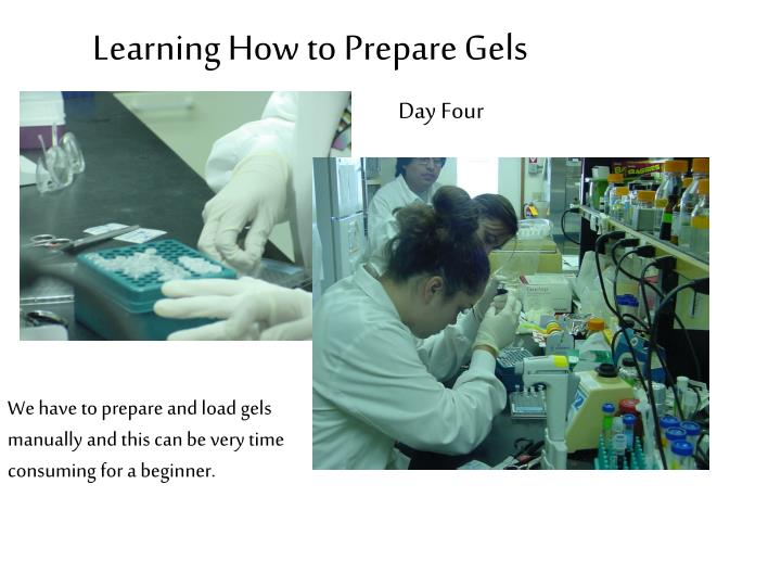 Learning How to Prepare Gels