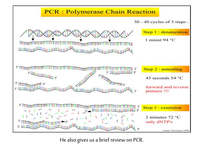 He also gives us a brief review on PCR.