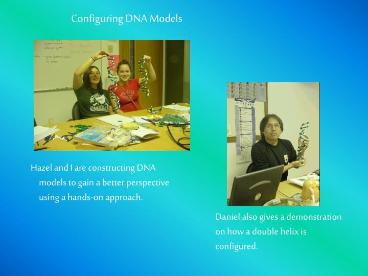 Configuring DNA Models