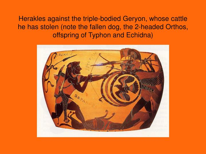 Herakles against the triple-bodied Geryon, whose cattle he has stolen (note the fallen dog, the 2-headed Orthos, offspring of Typhon and Echidna)