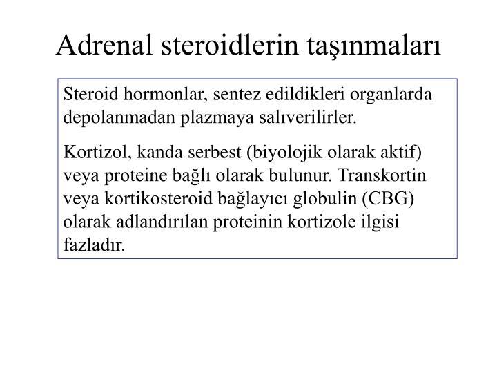 Adrenal steroidlerin taşınmaları