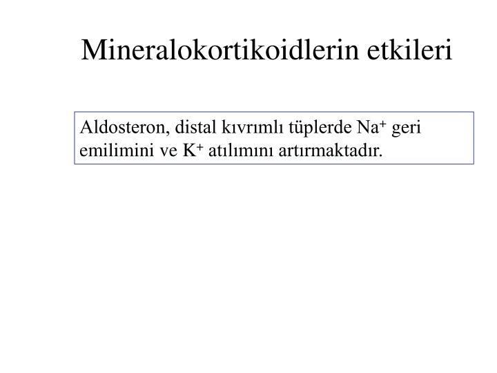 Mineralokortikoidlerin etkileri