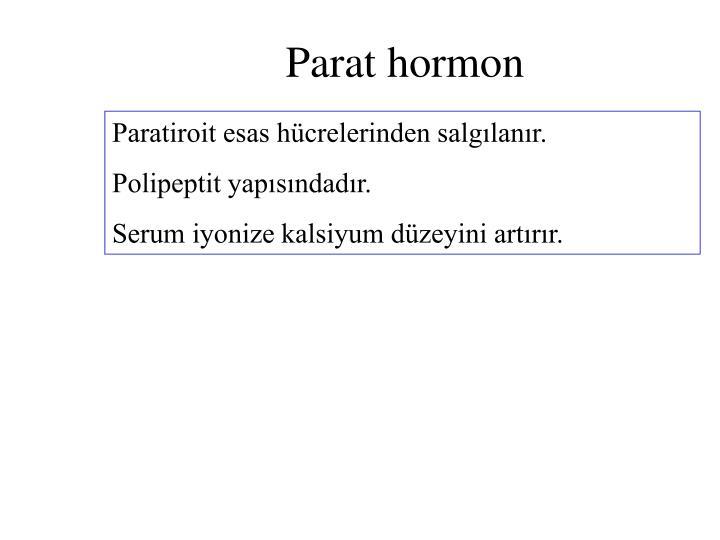 Parat hormon