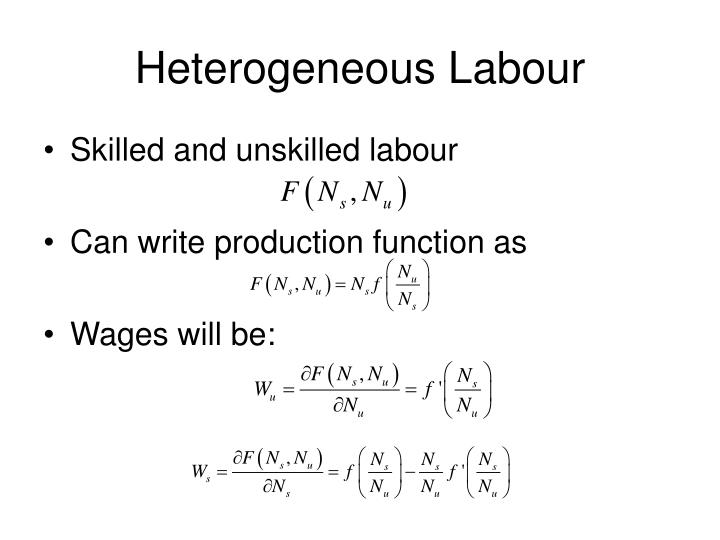Heterogeneous Labour