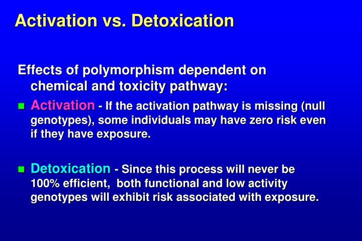 Activation vs. Detoxication