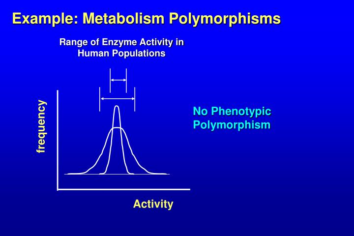 Example: Metabolism Polymorphisms