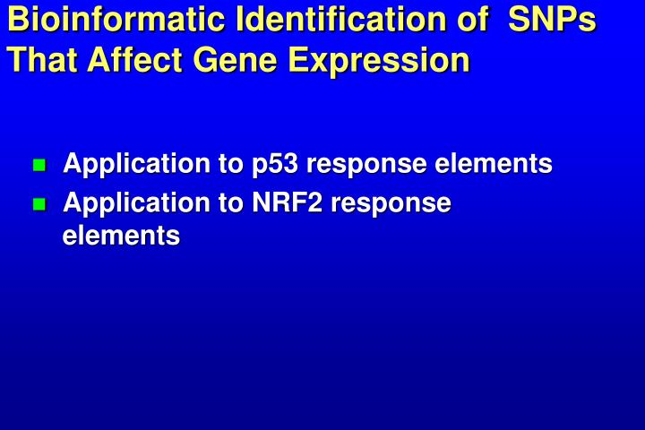 Bioinformatic Identification of  SNPs That Affect Gene Expression