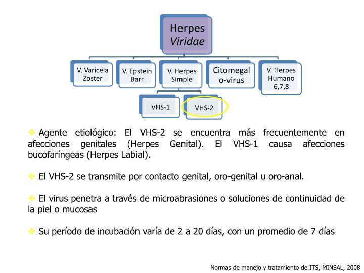 Agente etiológico: El VHS-2 se encuentra más frecuentemente en afecciones genitales (Herpes Genital). El VHS-1 causa afecciones bucofaríngeas (Herpes Labial).