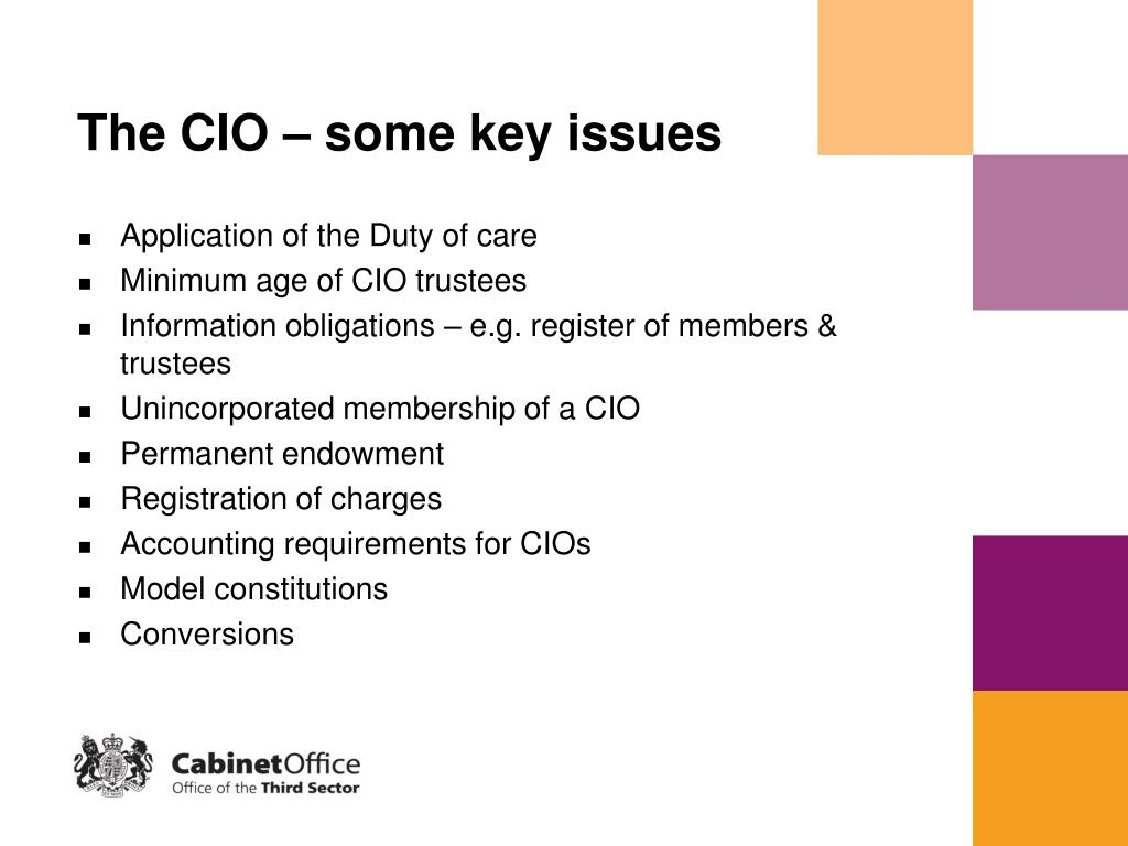 The CIO – some key issues