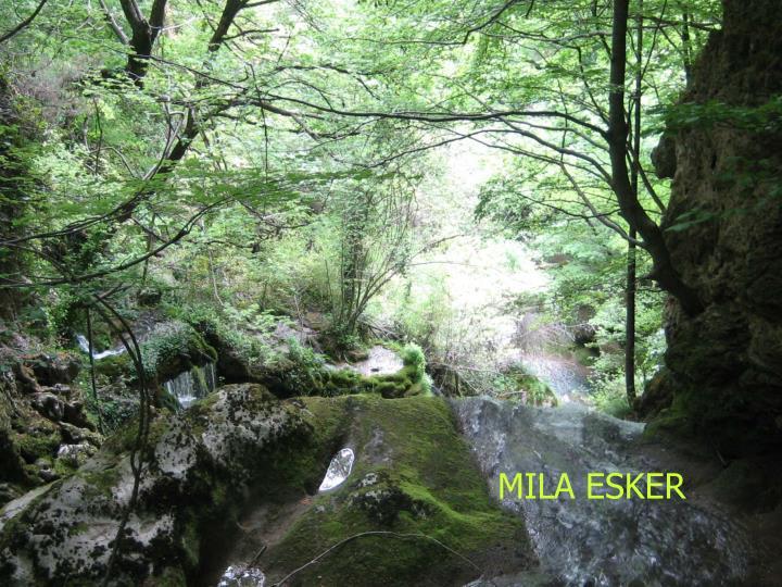 MILA ESKER
