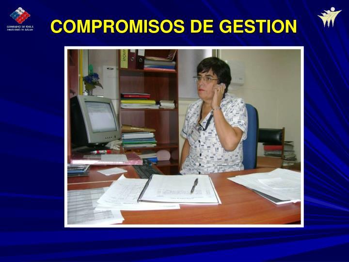 COMPROMISOS DE GESTION