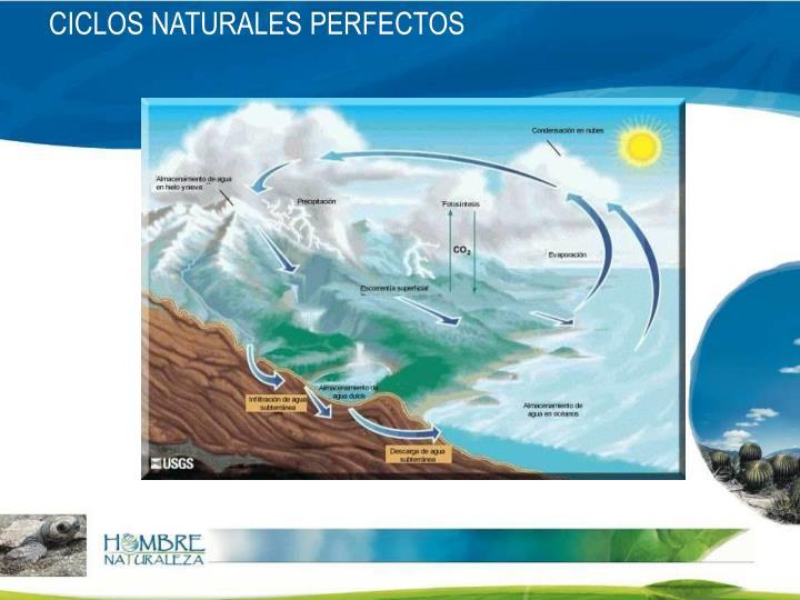 CICLOS NATURALES PERFECTOS