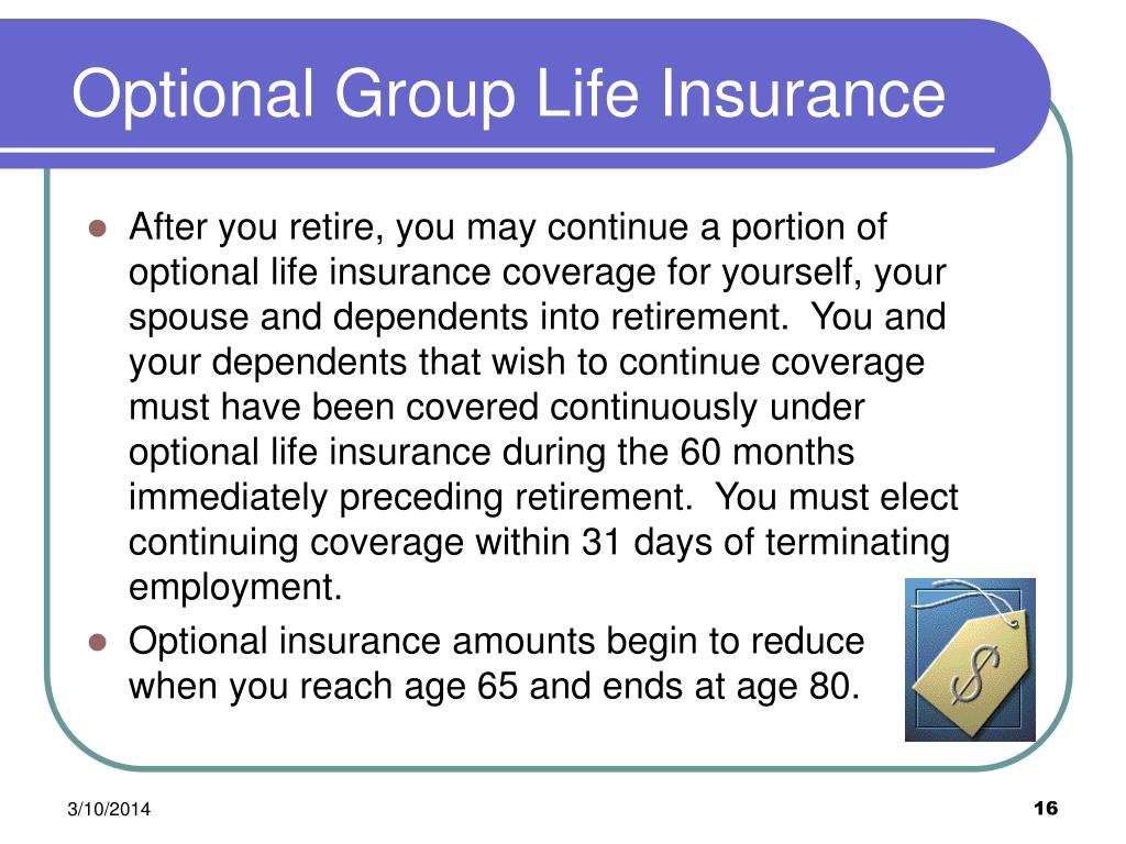 Optional Group Life Insurance